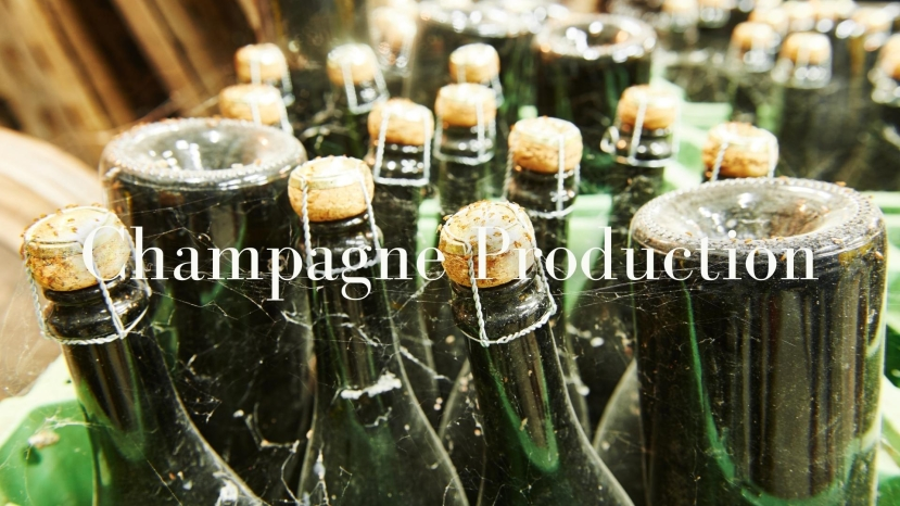 Contemporary Issues in Champagne Production with Charles Curtis MW