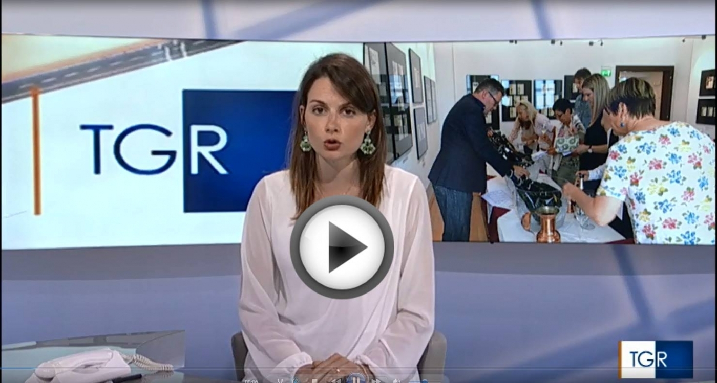 WSG makes the Italian news on RAI TV!