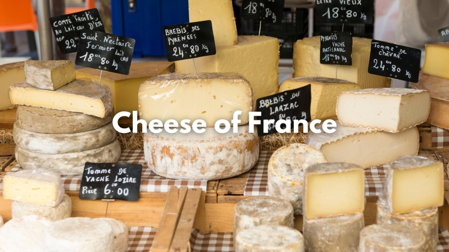 An Introduction to the Cheeses of France with Dan Belmont