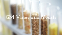 GM Vines and Yeasts with Christy Canterbury MW