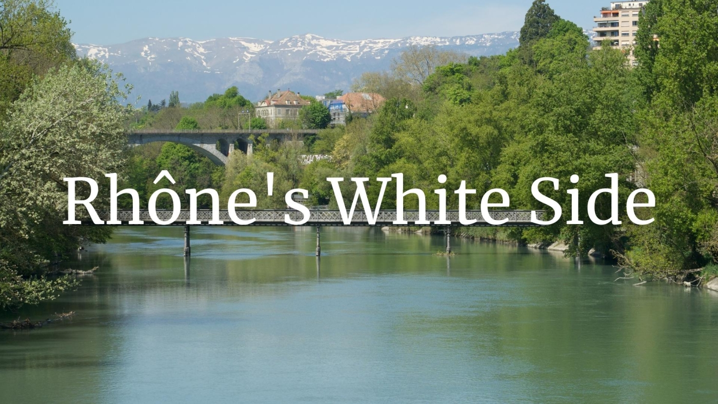 The White Side of the Rhône with Matt Walls