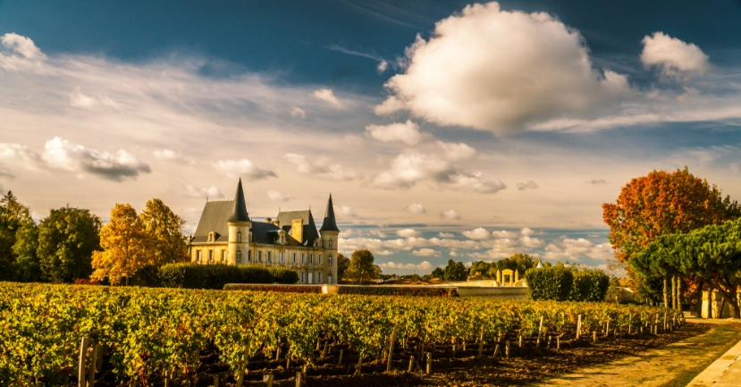Bordeaux Wine Study Tour with Jane Anson