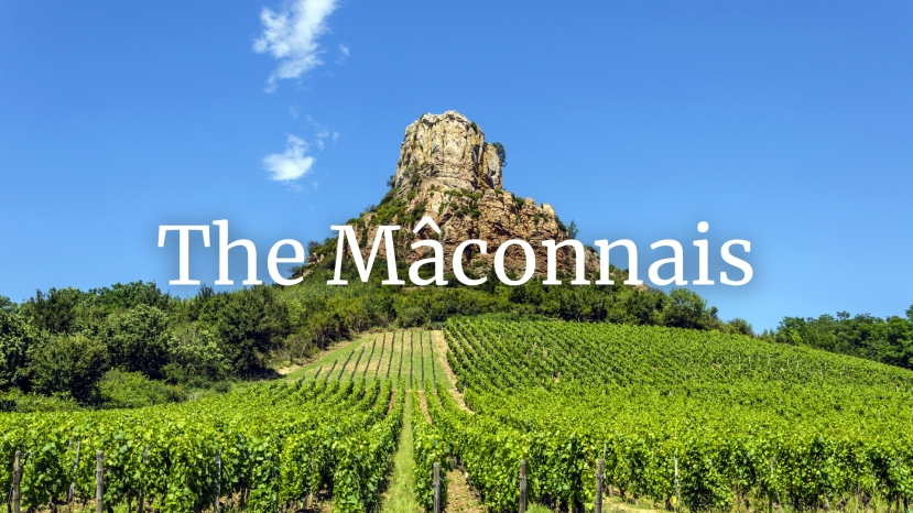 Mâconnais: The Land of Plenty with Tim Magnus