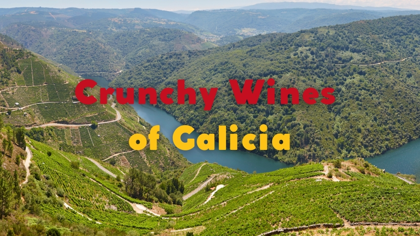 The Crunchy Wines of Galicia with Jonas Tofterup MW