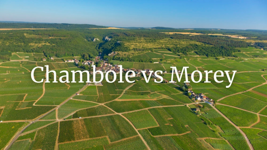 Chambolle vs Morey with Tim Magnus