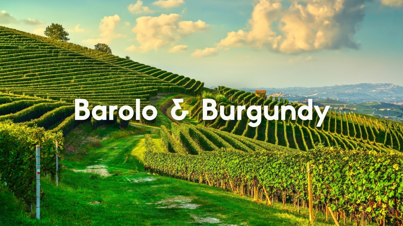 A Tale of Two Crus: Barolo and Burgundy with Christy Canterbury, MW