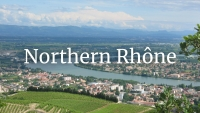Northern Rhône Wine Who's Who with Olivier Hickman