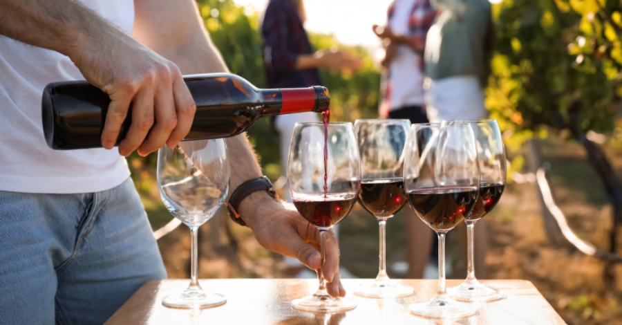 The Ten Best Italian Red Wines: A Beginner's Guide