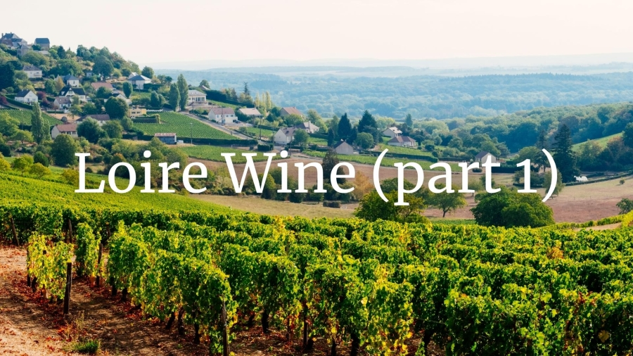 Loire Valley Wine Who's Who (Part 1 - Pays Nantais and Centre Loire) with Pascaline Lepeltier MS